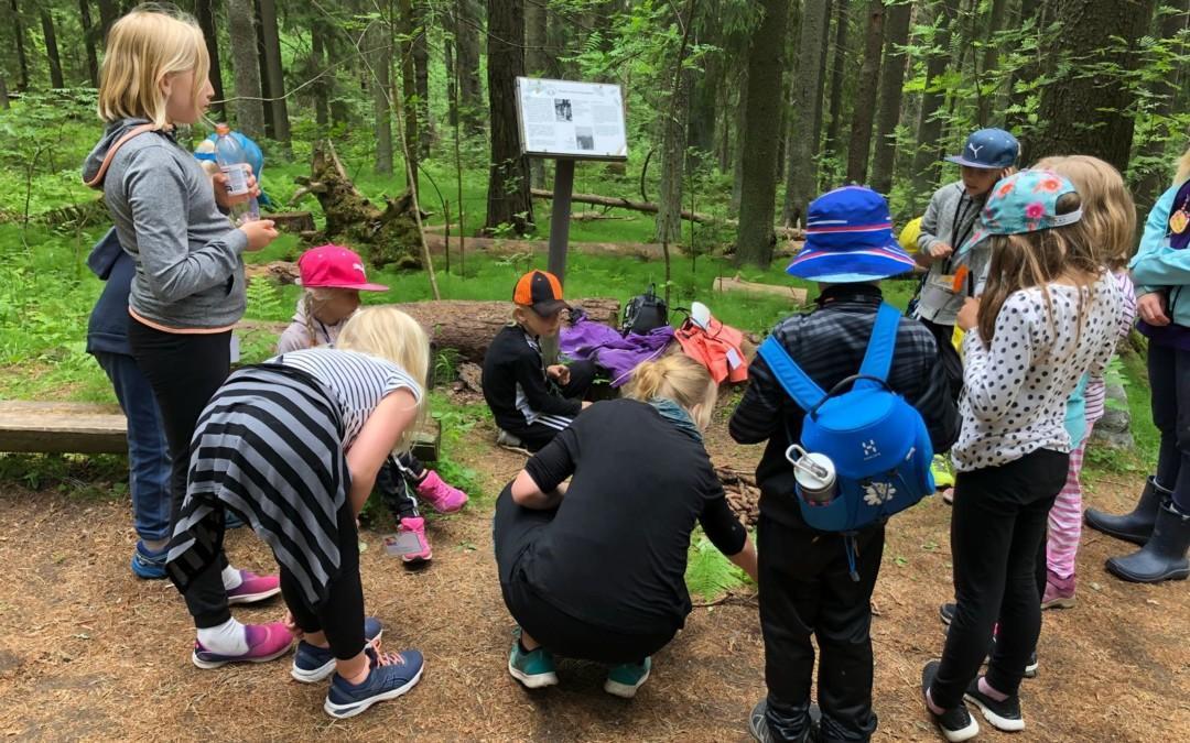 Oppilaiden luontosuhteita tutkimassa